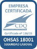 13615-ohsas-18001-grupo-on-seguridad-sl-100