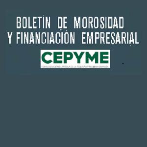 Boletín de Morosidad y Financiación Empresarial